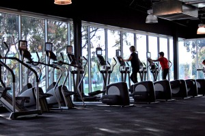 Gym_Cardio_Area_Overlooking_Greenery